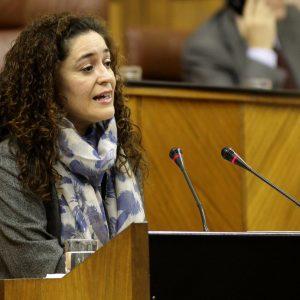 La portavoz de Salud de IU en el Parlamento andaluz.