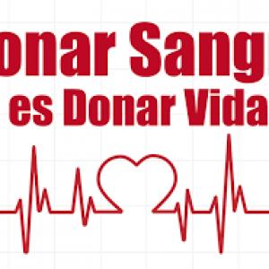 171003 dona sangre