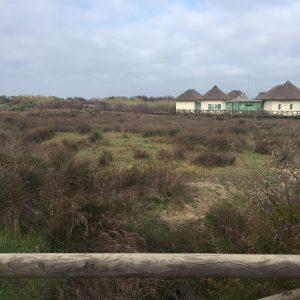 Ciudadanos reclama la recuperación de La Laguna de Regla en la convocatoria de infraestructuras turísticas de patrimonio natural de la Junta de Andalucía