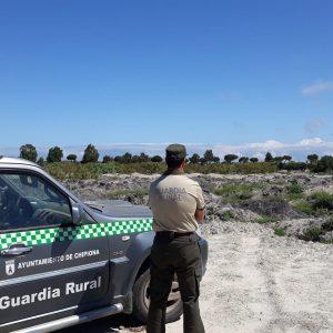Desmontadas por la Guardería Rural de Chipiona dos redes para la caza ilegal de aves insectívoras