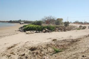 Los ecologistas de Chipiona denuncian la pérdida de una parte de playa Micaela .-