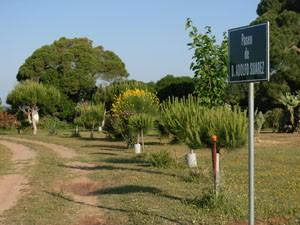 Rotulan en el Pinar de la Villa el paseo de D. Adolfo Suárez.-