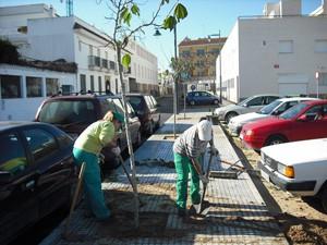 120 árboles  plantados en avenida de Sanlúcar y Rocío Jurado