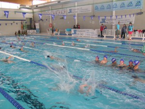 150 pre-benjamines han participado en la jornada de natación y convivencia organizada por Diputación en Rota