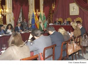 El pleno de Diputación aprueba el concurso para la concesión del servicio de ayuda a domicilio(Cádiz)