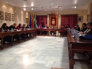 El pleno aprueba importantes modificaciones en las ordenanzas municipales para atender a colectivos sociales