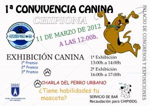 Chipiona acoge este domingo una convivencia canina promovida por la protectora de animales Chipidog