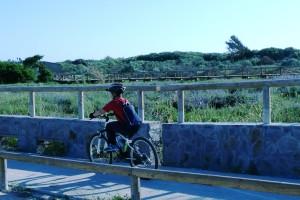 El Ayuntamiento atiende la petición de CANS y Capitán Pedales para que se limpien los carriles bici locales
