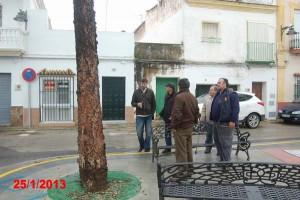 PSOE HACE LEÑA DEL ARBOL CAÍDO