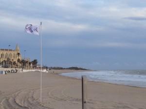 Playas retira las banderas tras comprobar que no hay  presencia de medusas