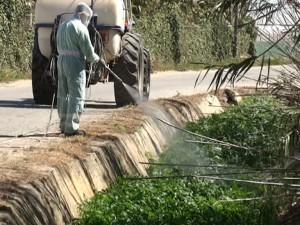 Agricultura comienza la campaña de limpieza de arroyos y cunetas