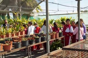 Los alumnos del Cristo de las Misericordias conocen en una visita el funcionamiento del Vivero Municipal