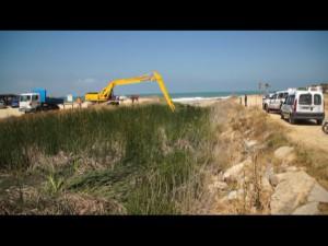 Concluye la limpieza del cauce del tramo del canal de Chapitel más próximo a la costa