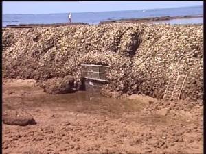 Medio Ambiente y Ordenación del Territorio prorroga cinco años la ocupación de los terrenos de los corrales de pesca