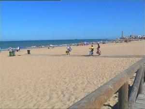 Los profesionales de playas y medioambiente instan a los ayuntamientos a limitar la presencia de animales en playas