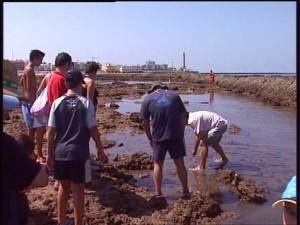 337 personas han participado en el programa de visitas a los corrales organizadas por Jarife y Turismo
