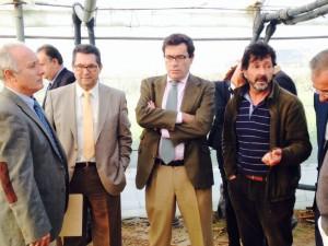 El Secretario General de Agricultura afirma que la rebaja del IVA debe ayudar a que la flor cortada recupere su lugar en el mercado internacional