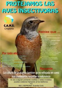 CANS hace un llamamiento a la colaboración ciudadana para eliminar la caza de aves insectívoras