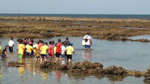 Educación y Jarife acercan a los escolares los corrales y su arte de pesca milenario en su anual programa de visitas