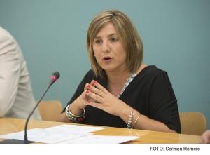 Irene García presenta el equipo de gobierno de Diputación para el mandato corporativo 2015-2019