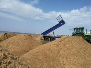 Playas intensifica la limpieza y adecuación de la arena para el comienzo de la temporada