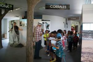 El Centro El Camaleón se consolida como uno de los principales atractivos turísticos de Chipiona