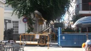 Parques y Jardines poda de urgencia la buganvilla de la calle Isaac Peral por razones de seguridad
