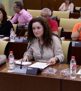 IU propone en el Parlamento Andaluz una Declaración Institucional en Pleno en defensa del legado de la Fundación Casa Medina Sidonia