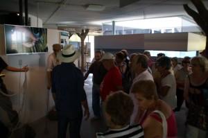 """El Centro """"El Camaleón"""" crece aumentando las visitas durante el  verano en un treinta por ciento"""