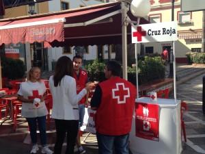 La Asamblea Local de Cruz Roja realiza la cuestación del Día de la Banderita
