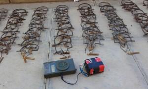 La colaboración ciudadana propicia un nuevo golpe de Policía Local y Guardería Rural a la caza ilegal de aves insectívoras