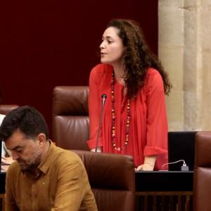 """Nieto: """"La Junta de Andalucía ha consumado hoy su política de privatización de la sanidad andaluza con la consolidación y aumento de los conciertos en la provincia de Cádiz"""""""