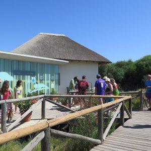 7508 personas visitaron durante 2017 el Centro 'El Camaleón'