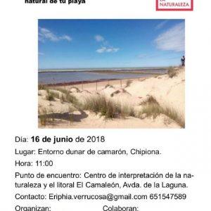 Llamamiento a participar mañana sábado en el proyecto Libera para la limpieza del entorno dunar de Camarón