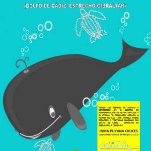 Unas charlas semanales en el Centro El Camaleón acercan el mundo de los cetáceos y tortugas marinas del Golfo de Cádiz y el Estrecho de Gibraltar