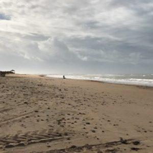 Aparece el cuerpo sin vida de un hombre en avanzado estado de descomposición en el corral Mariño