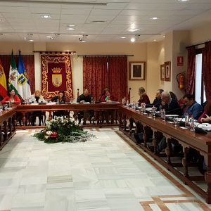 El pleno aprueba provisionalmente la modificación de ocho ordenanzas municipales y el expediente para la explotación del bar del Parque Blas Infante