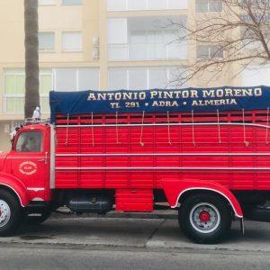 190208 camiones