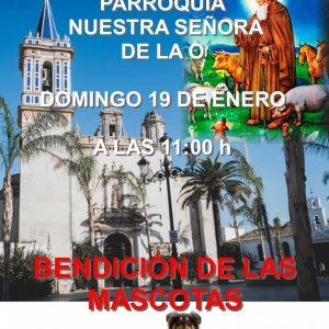 La plaza Juan Carlos I acoge el próximo domingo la Fiesta de San Antón en la que se bendecirán a las mascotas