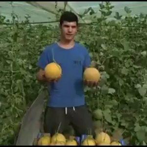 Agricultores de la zona lanzan un video para difundir la calidad de los productos hortícolas
