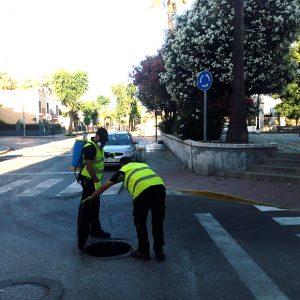Sanidad ha comenzado hoy una actuación general de desratización y desinsectación en el municipio