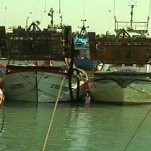 El Consejo Local de la Pesca de Chipiona retoma su actividad tras el parón provocado por la pandemia