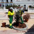 Parques y Jardines retoma los trabajos de adecentamiento de la Plaza del Molino
