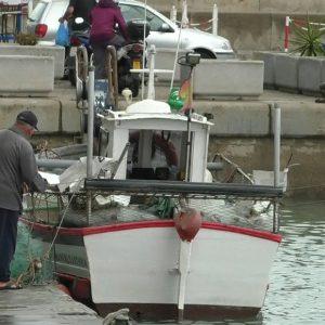 Laura Román informa sobre el asesoramiento para pedir las ayudas a la paralización temporal de la actividad pesquera