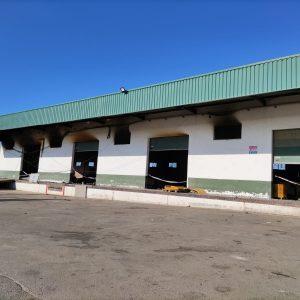 Mercado Rivera anuncia que mañana sábado retomará la actividad en la nave anexa de flor cortada