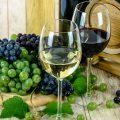 «Andalucía, tierra de vinos», documental sobre la elaboración y calidad de los vinos andaluces