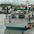 El Consejo Local de Pesca trató el problema del alga invasora, las ordenanzas de Playas y las obras en Puerto Chipiona