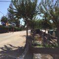Diputación rechaza la confrontación de la Junta con Chipiona y Sanlúcar sobre el camino de la Reyerta y la carretera del Práctico