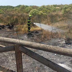 Un conato de incendio amenazó ayer el Centro de Interpretación de la Naturaleza y el Litoral El Camaleón