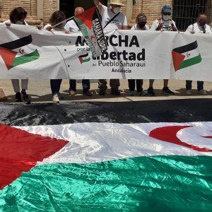Marcha por la Libertad del Pueblo Saharaui.  Etapa 15.-   Villafranca- Montoro  3 de Junio